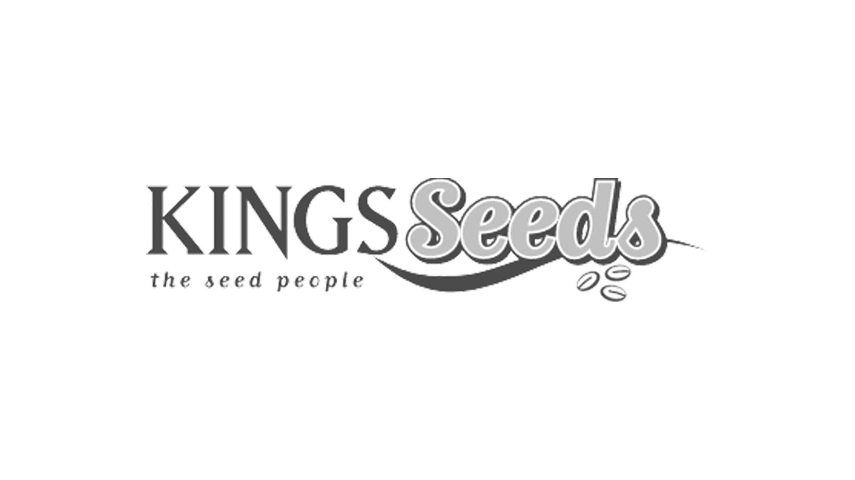 kingsseeds