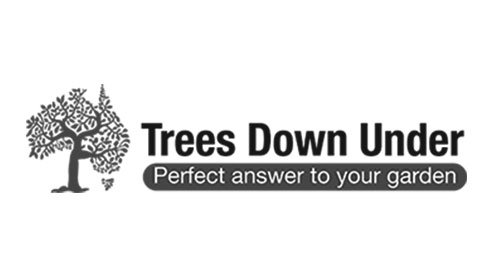 Trees-Down-Under-Logo