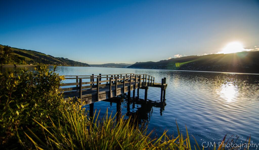 Otago Peninsula – Macandrew Bay Clean Up